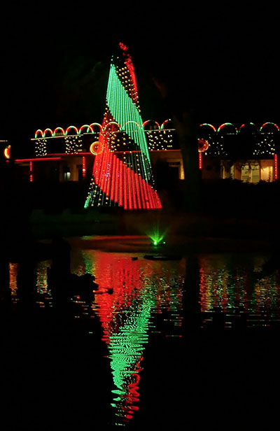 Christmas Lights Synchronized To Music Kits